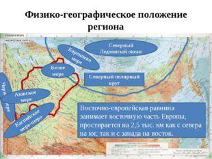 Физико-географическое положение региона Восточно-европейская равнина занимает