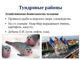 Тундровые районы Хозяйственная деятельность человека: Промысел рыбы и морског