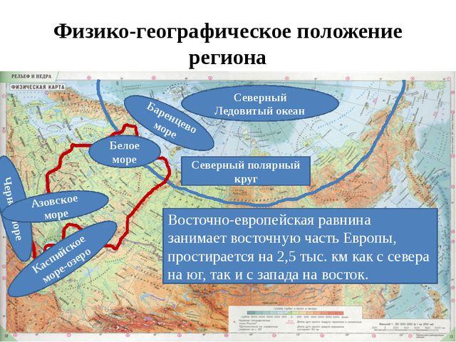 Физико-географическое положение региона Восточно-европейская равнина занимает...