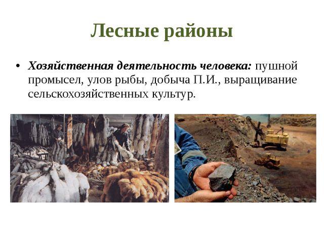 Лесные районы Хозяйственная деятельность человека: пушной промысел, улов рыбы...