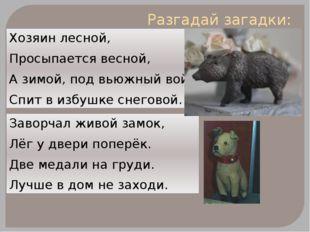 Разгадай загадки: Хозяин лесной, Просыпается весной, А зимой, под вьюжный вой