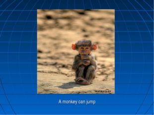 A monkey can jump