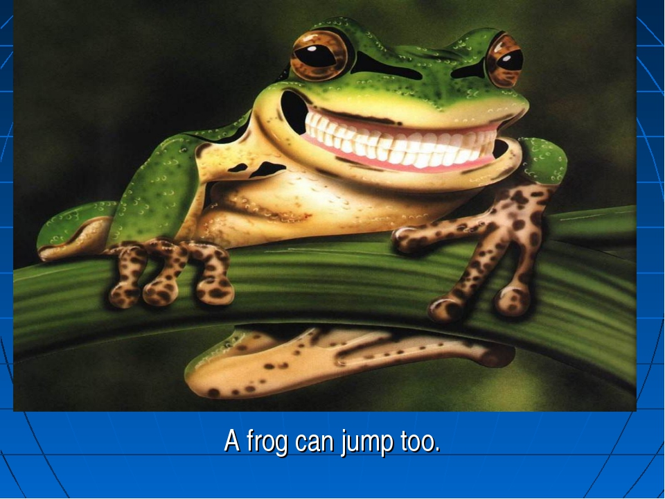 A frog can jump too.