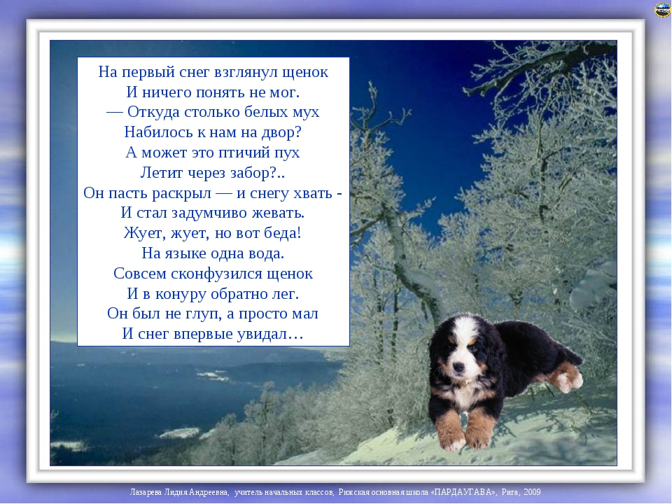 Весь стих щенок и снег