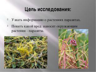 Цель исследования: Узнать информацию о растениях паразитах. Понять какой вред