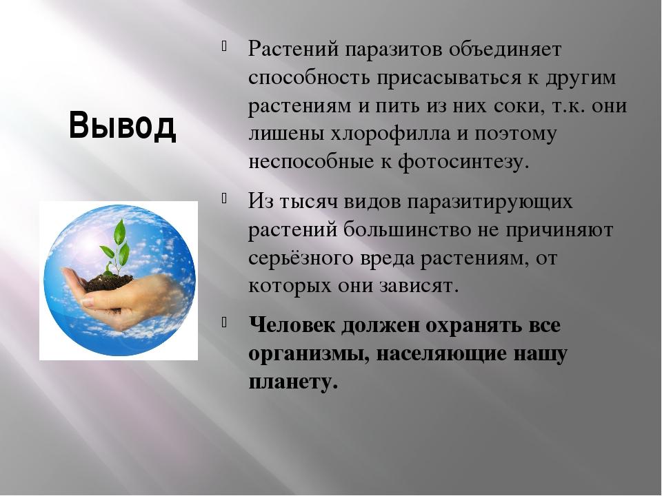 Вывод Растений паразитов объединяет способность присасываться к другим растен...
