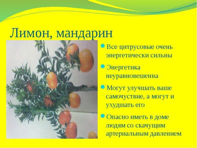 Лимон, мандарин Все цитрусовые очень энергетически сильны Энергетика неуравно...