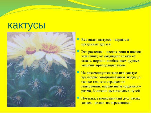 кактусы Все виды кактусов - верные и преданные друзья Это растение – цветок-в...