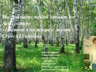 Исследовательский проект по литературе «Цветовая палитра в лирике Сергея Есен