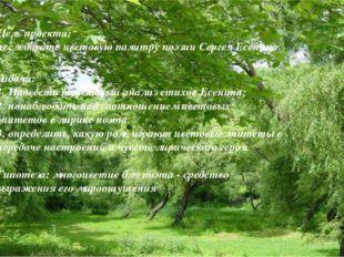 Цель проекта: исследовать цветовую палитру поэзии Сергея Есенина Задачи: 1. П