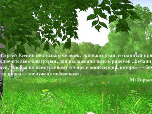 «...Сергей Есенин не столько человек, сколько орган, созданный природой исклю