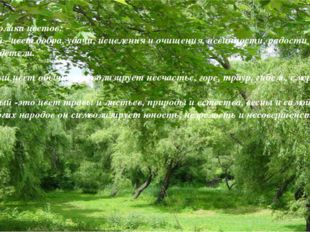 Символика цветов: Белый –цвет добра, удачи, исцеления и очищения, невинности,