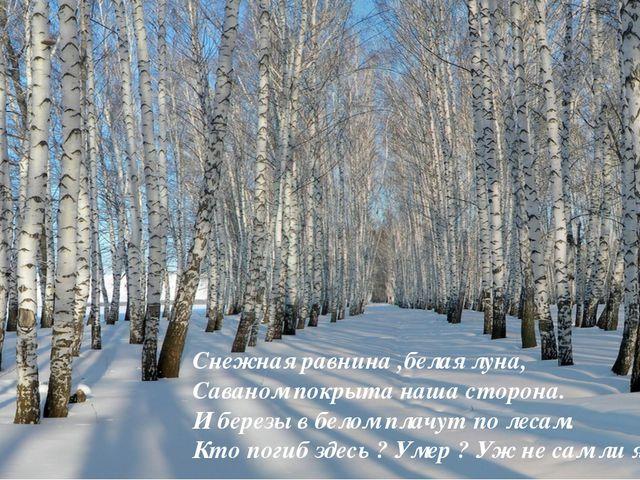 Снежная равнина ,белая луна, Саваном покрыта наша сторона. И березы в белом п...