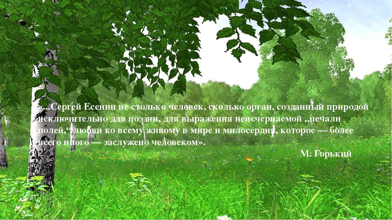 «...Сергей Есенин не столько человек, сколько орган, созданный природой исклю...