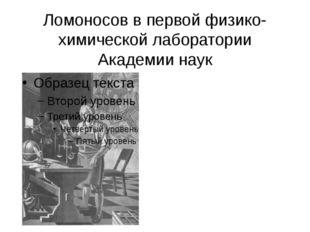 Ломоносов в первой физико-химической лаборатории Академии наук
