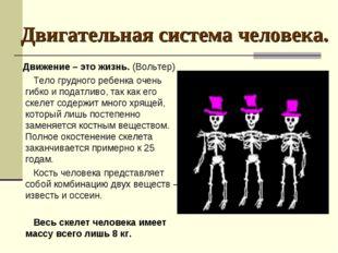 Двигательная система человека. Движение – это жизнь. (Вольтер) Тело грудного