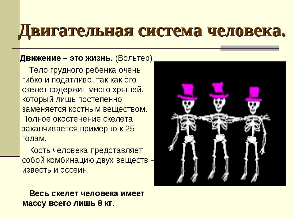 Двигательная система человека. Движение – это жизнь. (Вольтер) Тело грудного...