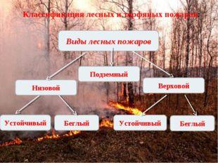 Классификация лесных и торфяных пожаров: Виды лесных пожаров Подземный Низово
