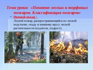 Тема урока: «Понятие лесных и торфяных пожаров. Классификация пожаров» Низов