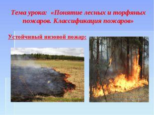 Тема урока: «Понятие лесных и торфяных пожаров. Классификация пожаров» Устой