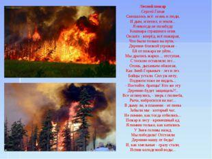 Лесной пожар Сергей Газин Смешалось всё: огонь и люди, И дым, и пепел, и земл