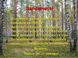 Запомните! Основной причиной лесных пожаров является безответственное поведен