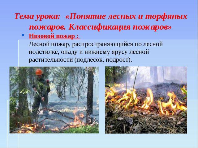 Тема урока: «Понятие лесных и торфяных пожаров. Классификация пожаров» Низов...