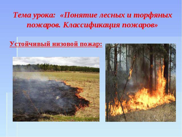 Тема урока: «Понятие лесных и торфяных пожаров. Классификация пожаров» Устой...