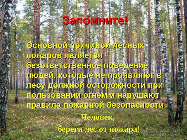 Запомните! Основной причиной лесных пожаров является безответственное поведен...