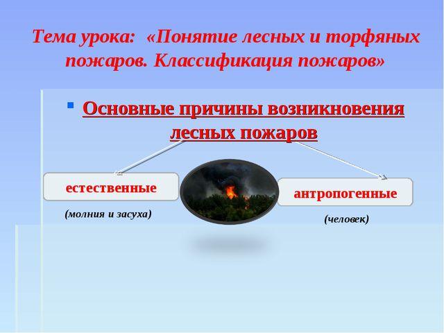 Тема урока: «Понятие лесных и торфяных пожаров. Классификация пожаров» Основ...
