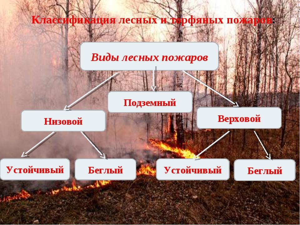 Классификация лесных и торфяных пожаров: Виды лесных пожаров Подземный Низово...