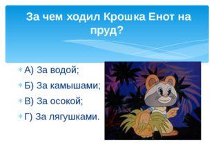 За чем ходил Крошка Енот на пруд? А) За водой; Б) За камышами; В) За осокой;