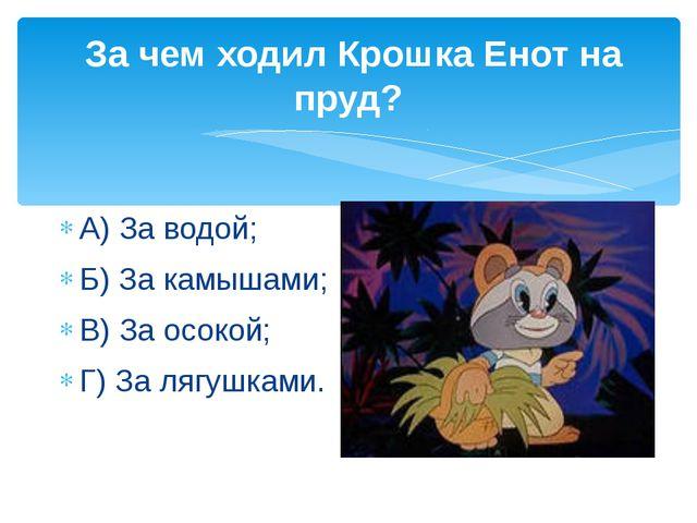 За чем ходил Крошка Енот на пруд? А) За водой; Б) За камышами; В) За осокой;...