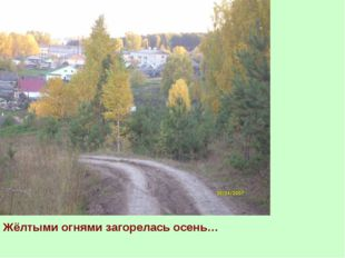 Жёлтыми огнями загорелась осень…