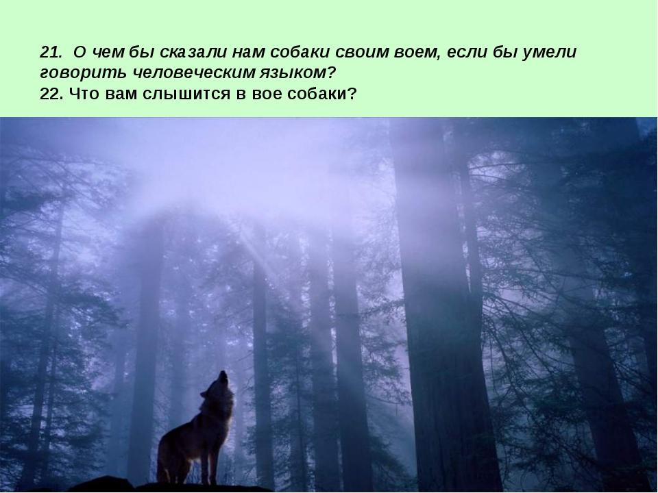 21. О чем бы сказали нам собаки своим воем, если бы умели говорить человечес...