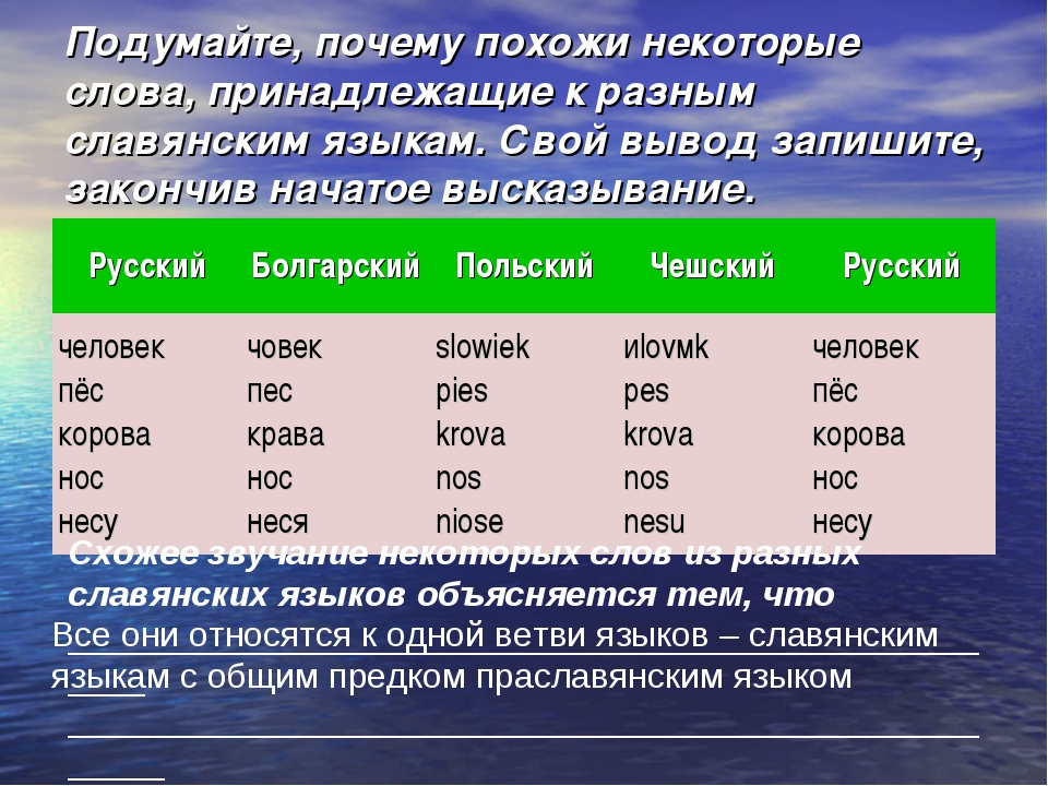 Подумайте, почему похожи некоторые слова, принадлежащие к разным славянским я...
