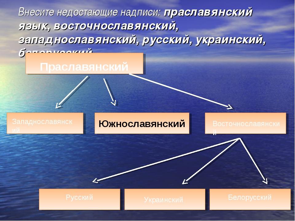 Внесите недостающие надписи: праславянский язык, восточнославянский, западнос...