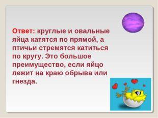 Ответ: круглые и овальные яйца катятся по прямой, а птичьи стремятся катиться