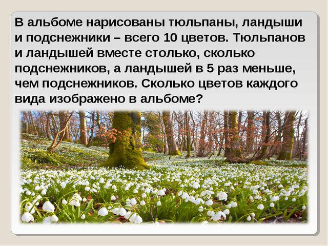 В альбоме нарисованы тюльпаны, ландыши и подснежники – всего 10 цветов. Тюльп...