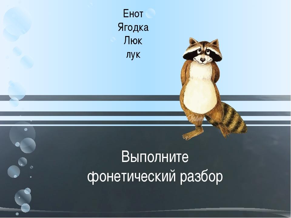 Выполните фонетический разбор Енот Ягодка Люк лук