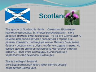 Scotland The symbol of Scotland is thistle. . Символом Шотландии является че