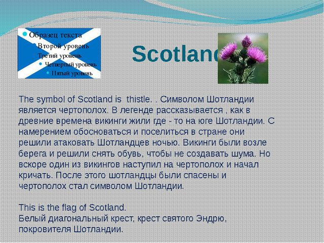 Scotland The symbol of Scotland is thistle. . Символом Шотландии является че...