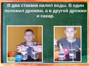 В два стакана налил воды. В один положил дрожжи, а в другой дрожжи и сахар.