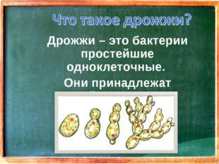 Дрожжи – это бактерии простейшие одноклеточные. Они принадлежат семейству гр