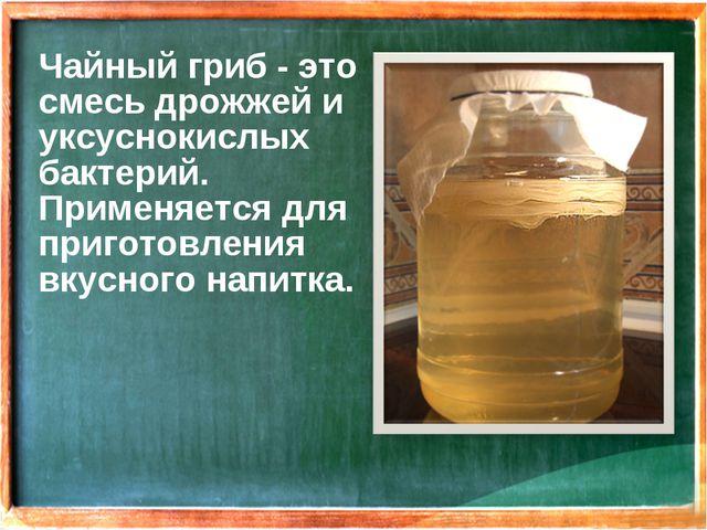 Чайный гриб - это смесь дрожжей и уксуснокислых бактерий. Применяется для при...