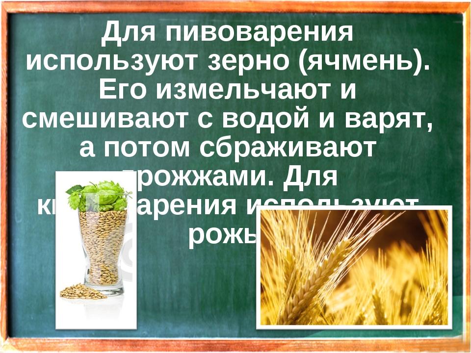 Для пивоварения используют зерно (ячмень). Его измельчают и смешивают с водой...