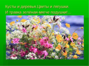 Кусты и деревья.Цветы и лягушки. И травка зелёная-мягче подушки!… summertime.