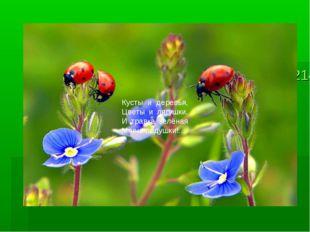 413214413214__ladybirds_p.jpg__la413214__ladybirds_p.jpgdybirds_p.jpg Кусты и