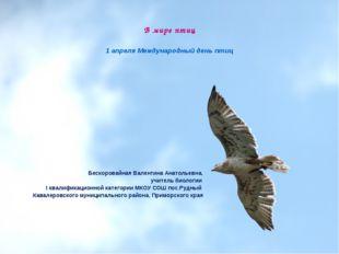 В мире птиц 1 апреля Международный день птиц Бескоровайная Валентина Анатоль