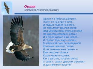 Орлан и в небесах заметен. Парит он на виду у всех… И грудью падает на ветер,